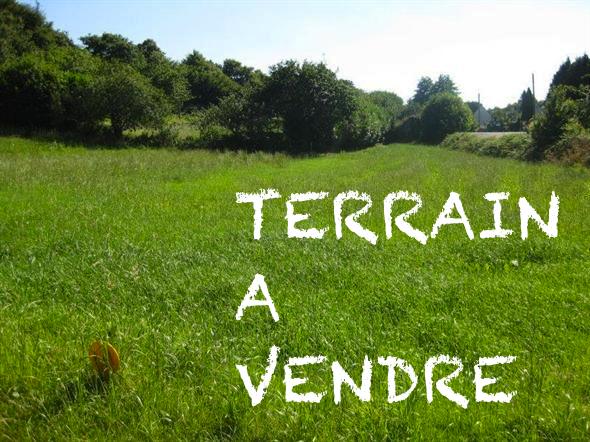 Un Terrain de 1000 m² est en vente à Raoued Ville