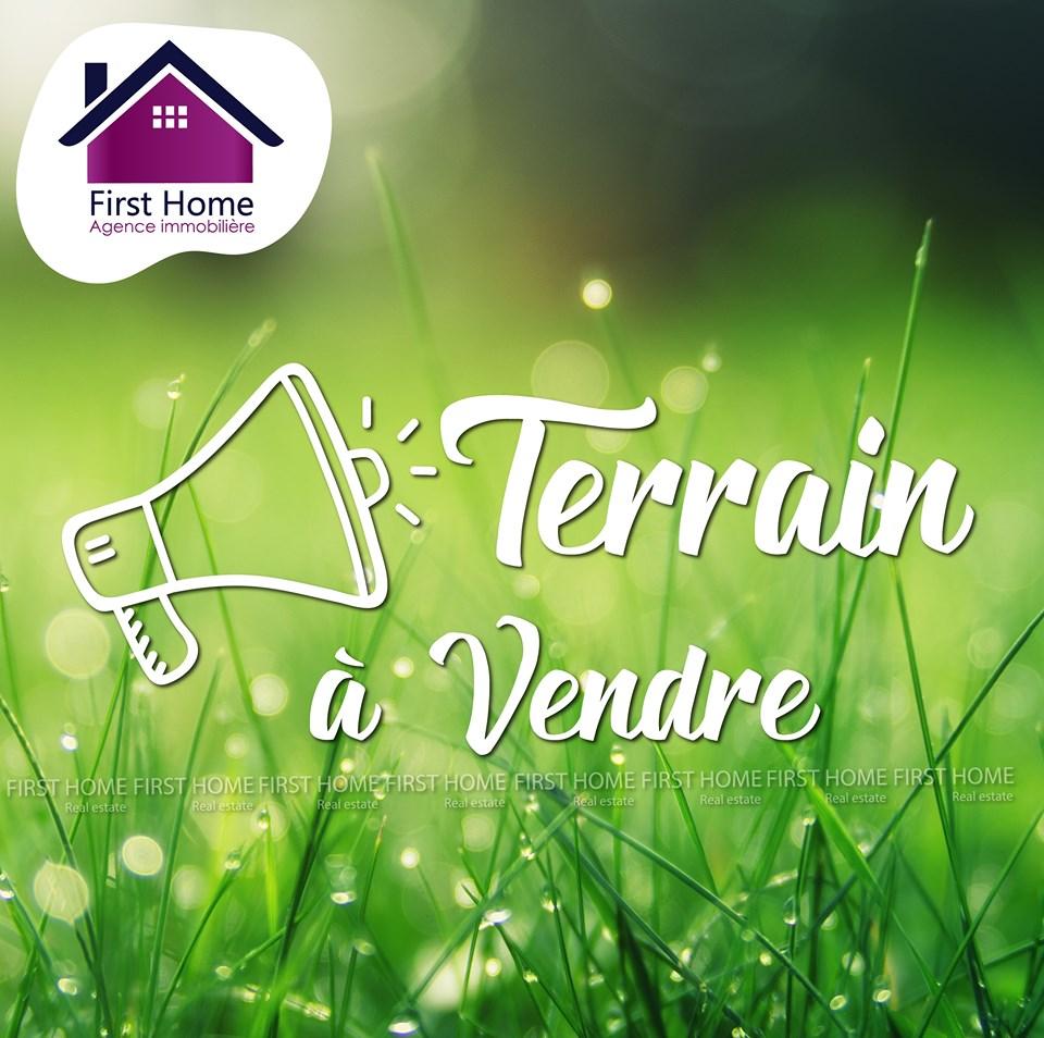A vendre un terrain de 580 m² à Riadh Andalous